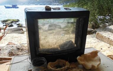 Телевизор «Ихтиозавр» (2016)